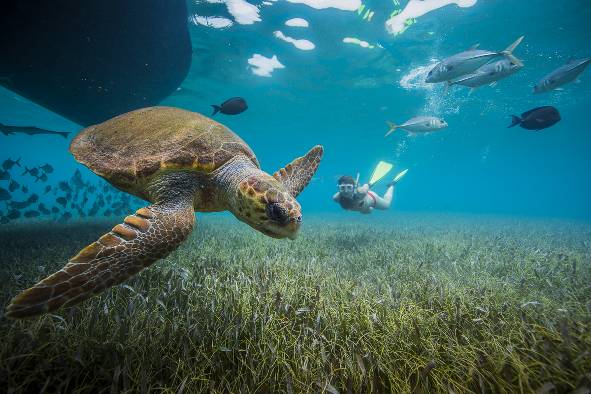 6 Cayes that aren't Caye Caulker or Ambergris Caye | 2