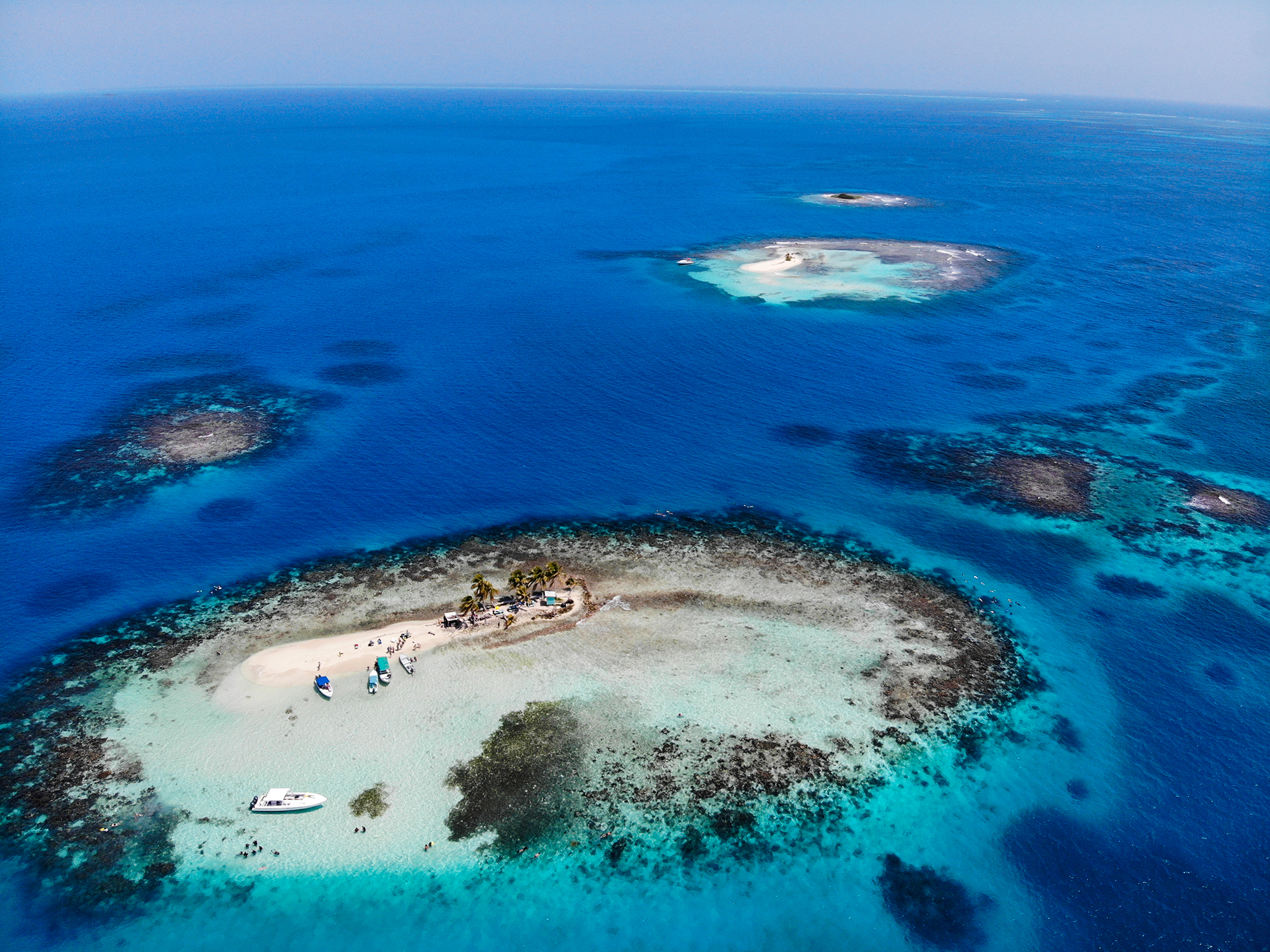 Top Places in Belize to Experience Marine Life 3